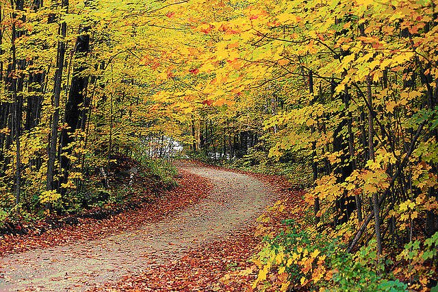Hapgood Pond Recreation Area of Green Mountain National Forest displays fall foliage splendour. US Dept of Agriculture