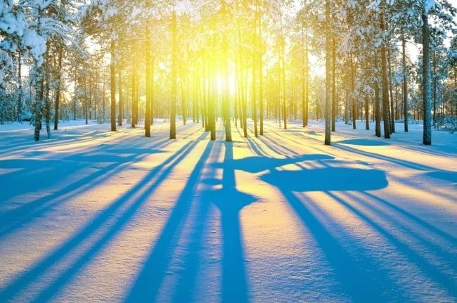 To Combat Seasonal Affective Disorder, catch morning sunshine