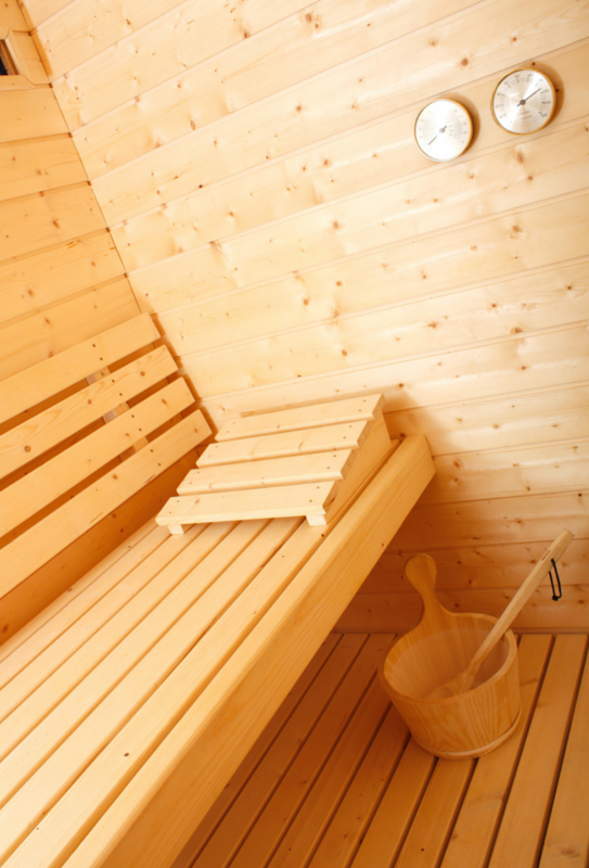 Mr._Steam_Dry_Sauna.png