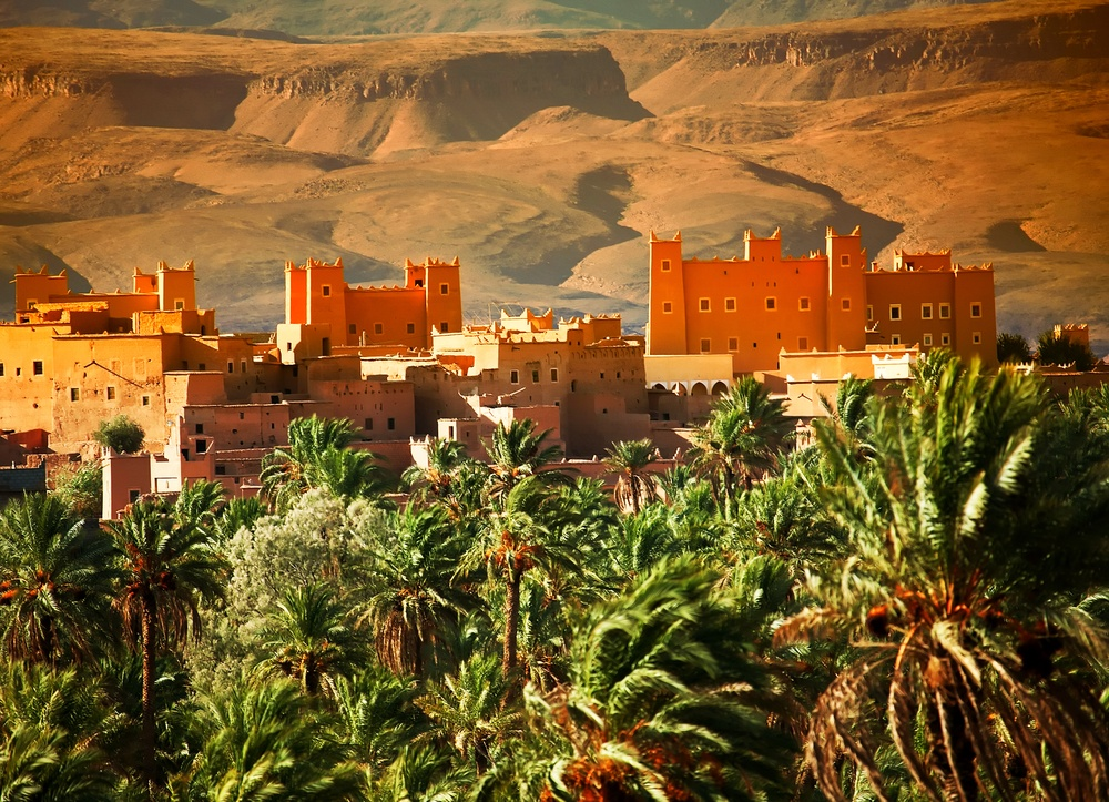 Learn about how to repair and replenish your skin and hair from the Moroccans…