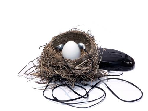 Eggs appreciate music and steamtherapy