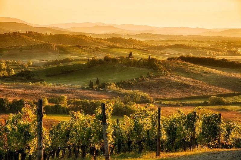Hagan Flynn Design Center Sells Steam Benefits, Experiences Tuscan Thermal Spa