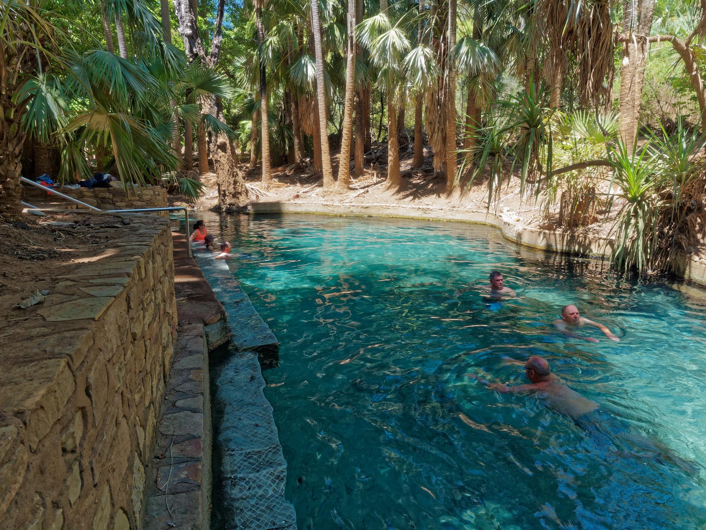 Mataranka Thermal Pools